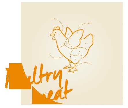 poultry_meat_bioalleva